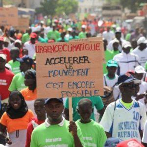 Jeune Volontaires de l'Environnement (JVE Sénégal)