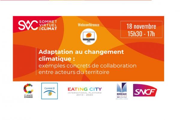 Climate Chance participe au Sommet Virtuel du Climat