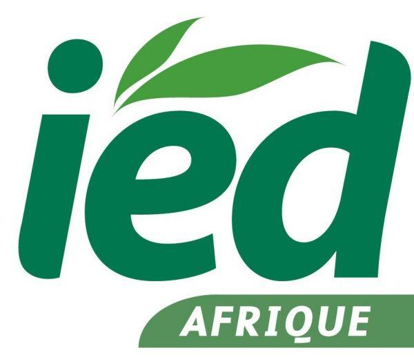 Innovation Environnement et Développement en Afrique