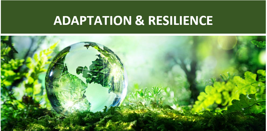 Adaptation and Resilience Coalition   Climate Chance