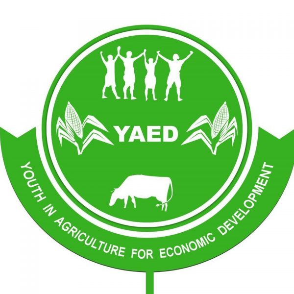 Youth in Agriculture for Economic Development (YAED)