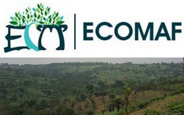 Environmental Conservation and Management Foundation (Ecomaf Ghana)