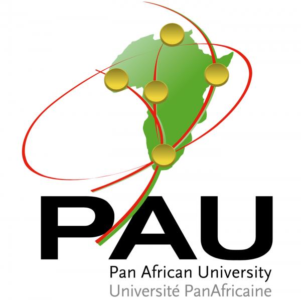 Pan African University