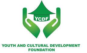 Fondation pour le Développement de la Jeunesse et de la Culture
