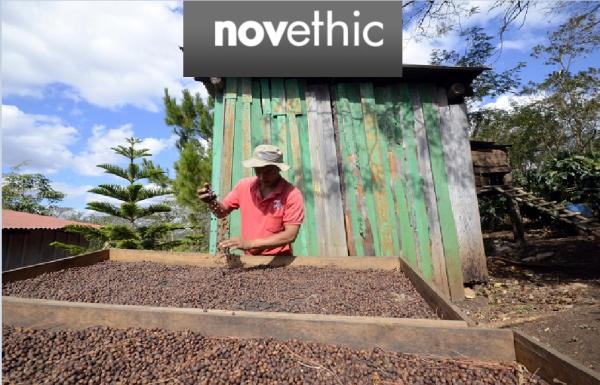 Tour du monde #Adaptation: Nicaragua, péril sur la production de café