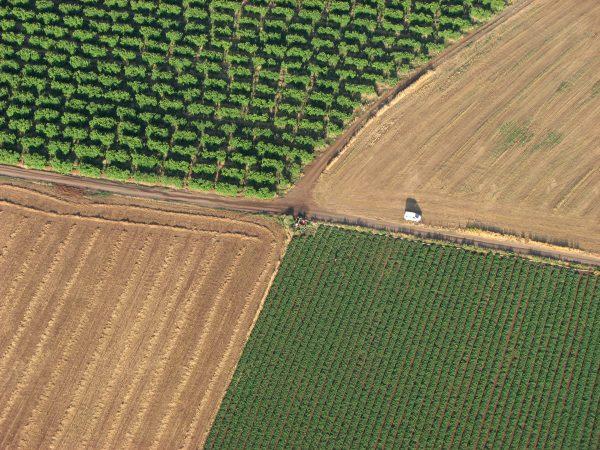 La Minute Climate Chance: Action climat, Covid-19 et usage des sols