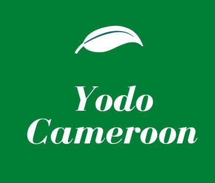 Organisation de développement de la jeunesse - Yodo-Cameroon